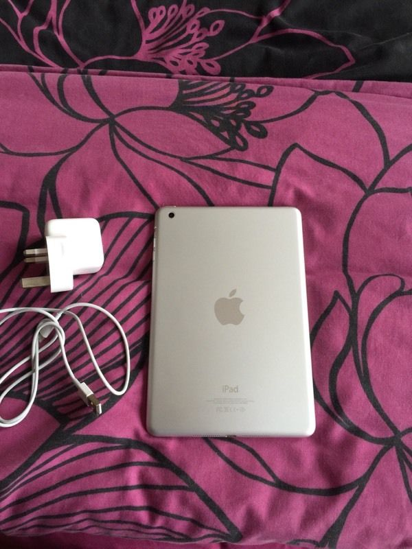 iPad mini 16gb mint condition