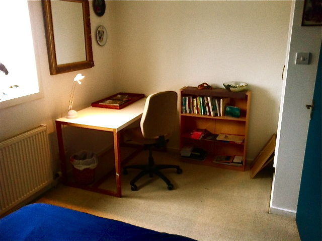 Room in central flat