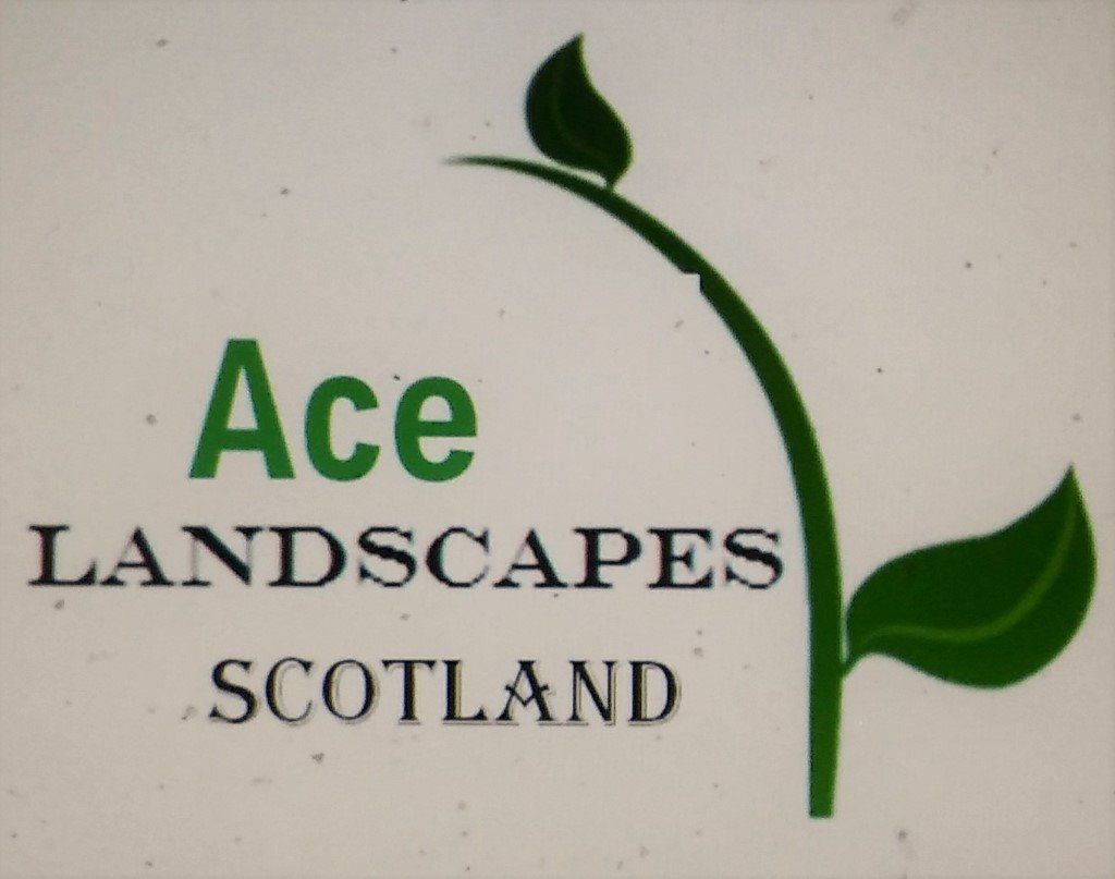 Ace Landscapes ( Commercial & Domestic landscaping)