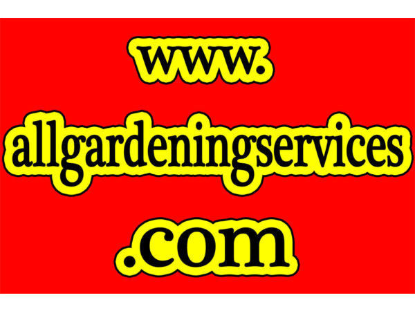 GARDENER TREE SURGERY CUTTING TREES cut PRUNING Roots extraction ALL AROUND WEST NORTH WEST LONDON