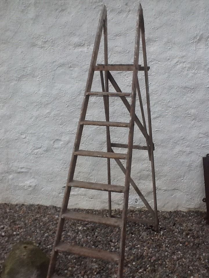 Old vintage wooden step ladder, plant, house, shop, display stand
