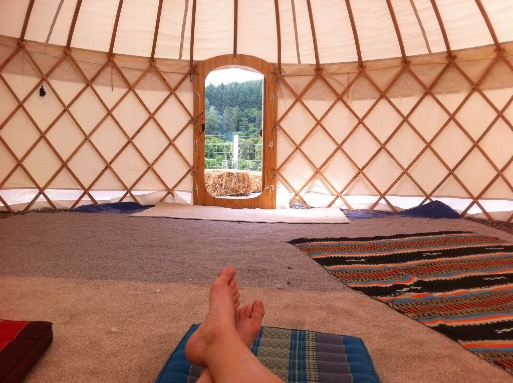 Hand built 20ft yurt with Celtic knot door and hand painted. Used once