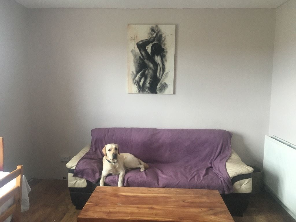 URGENT PET FRIENDLY FLAT WANTED ASAP
