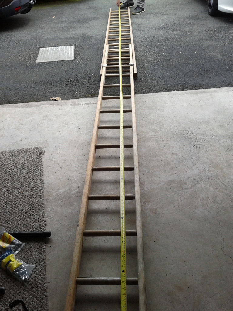 Pair of Extendable Ladders in really great condition - Only used a few times - BARGAIN