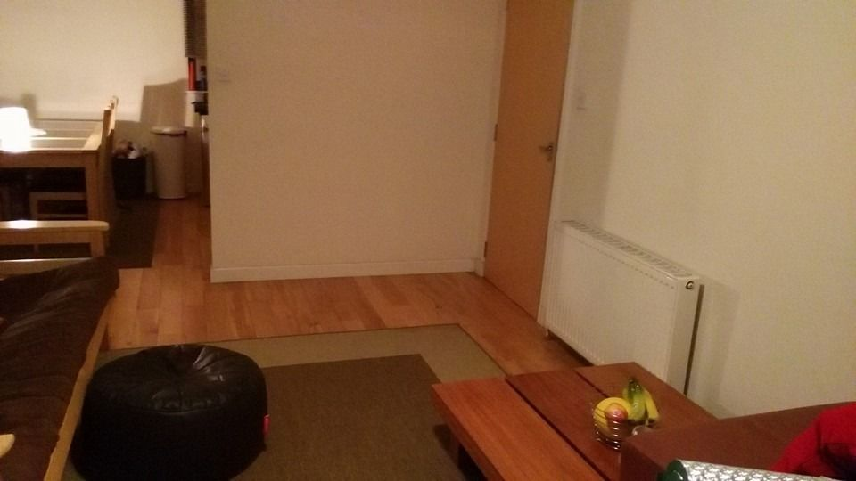 Professional flatmate wanted- 1 furnished double bedroom