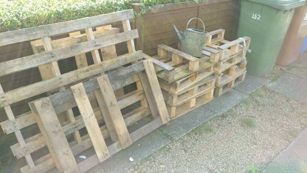 Free pallets, bench, chair and a random old watering can
