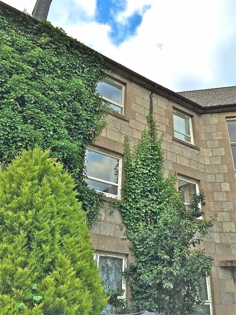 DOUBLE ROOM IN LARGE TOP FLOOR FLAT IN OLD ABERDEEN NEXT TO UNIVERSITY