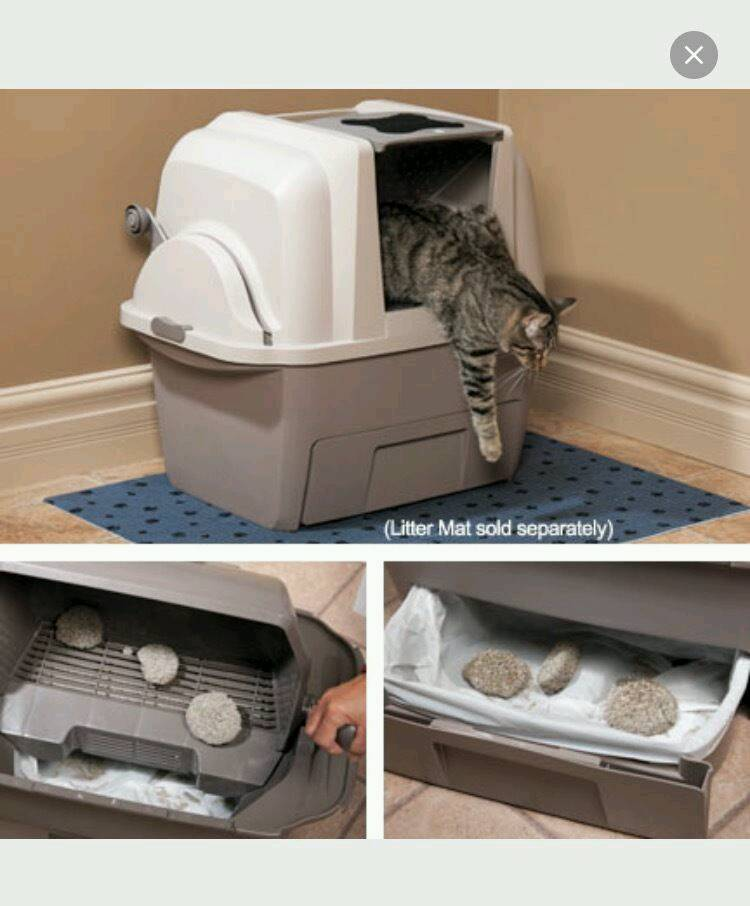 SmartSift Cat automatic litter