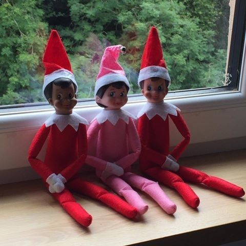 Elf on the Shelf - Christmas must have! Now in stock and selling fast - various colours available