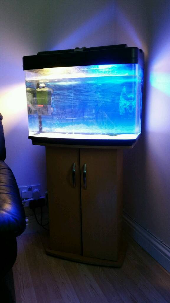 65 litre marine/tropical fish tank