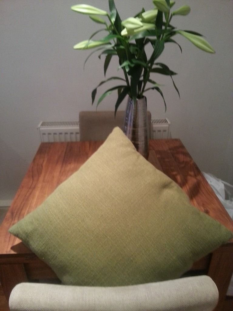 4 cushions large m&s olive green