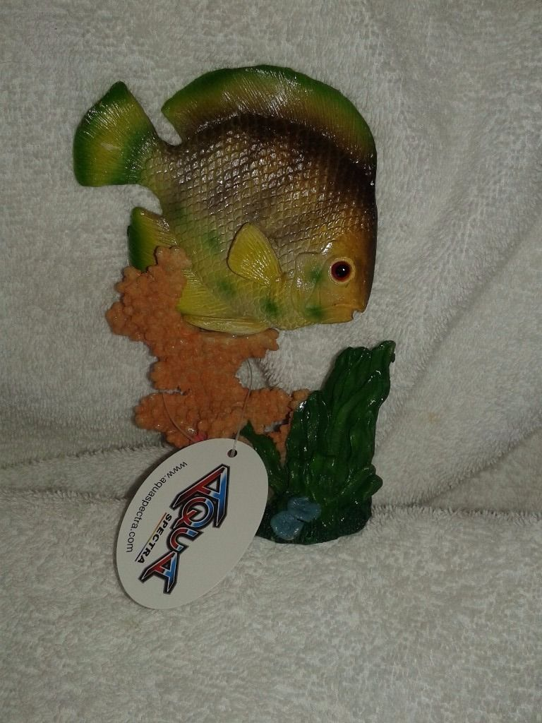 Selection of fish tank goods
