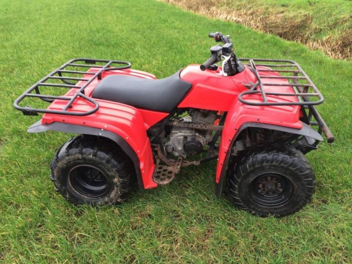 Quad Yamaha Beartracker 250 2003