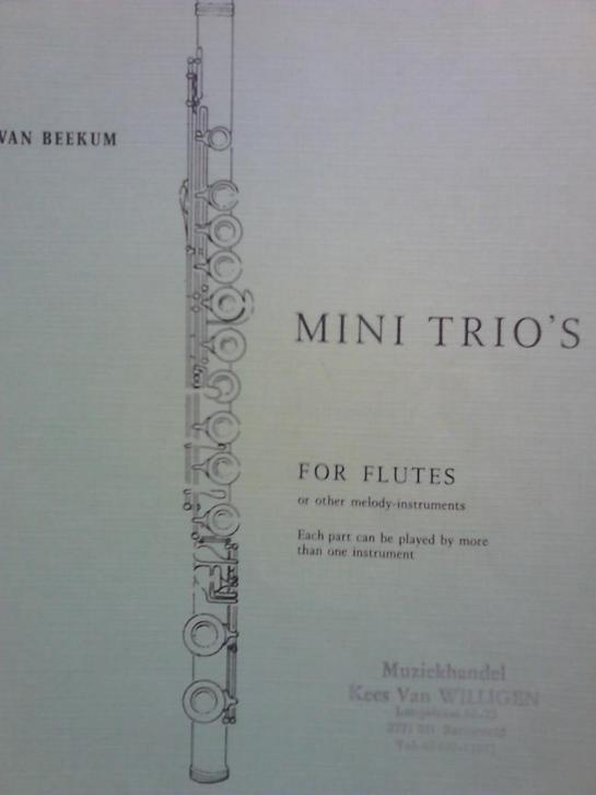 Fluit Mini Trio,s volume 1 Jan van Beekum.