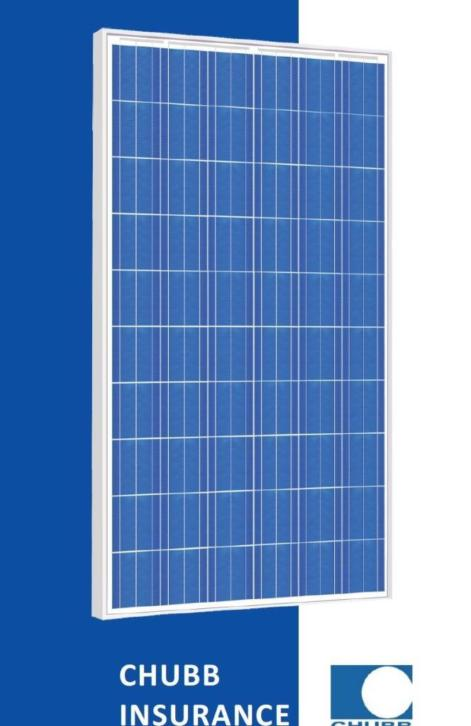 Zonnepanelen Risen 255wp Poly