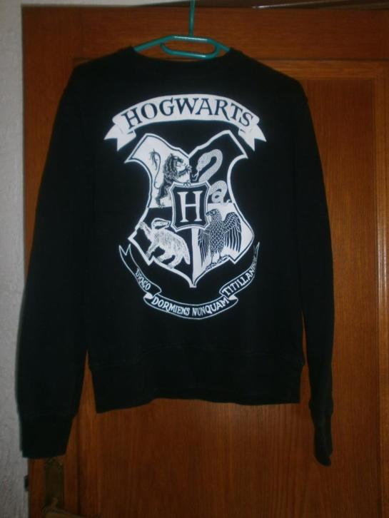 Trui Harry Potter maat M