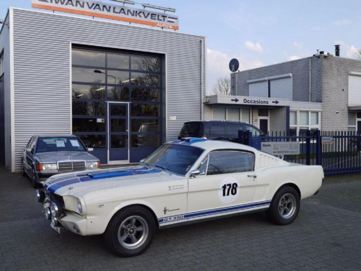 Ford USA Mustang FASTBACK GT 350 SHELBY RACER CLONE 302 FORD