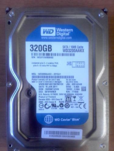 Western Digital 320 gb