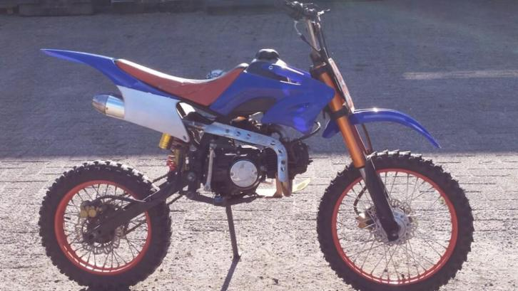 orion pitbike 125 cc
