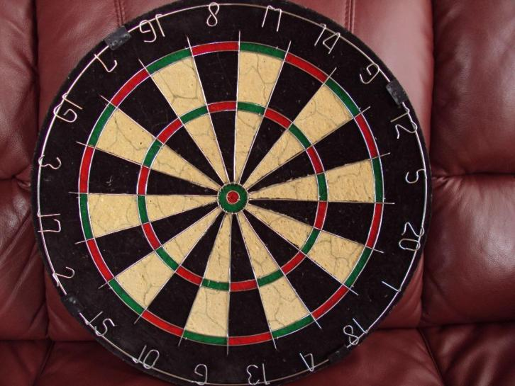 Professional Dartbord