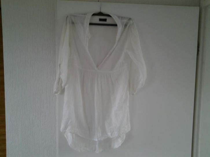 wit shirt/blouse
