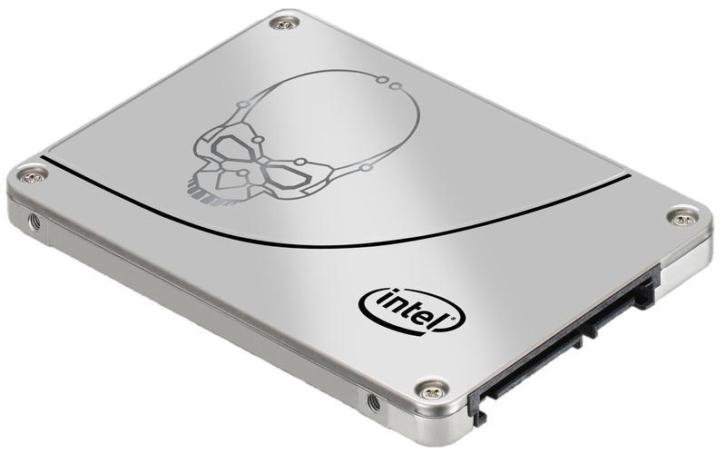 Intel Solid-State Drive 730 Series - solid state drive - 480