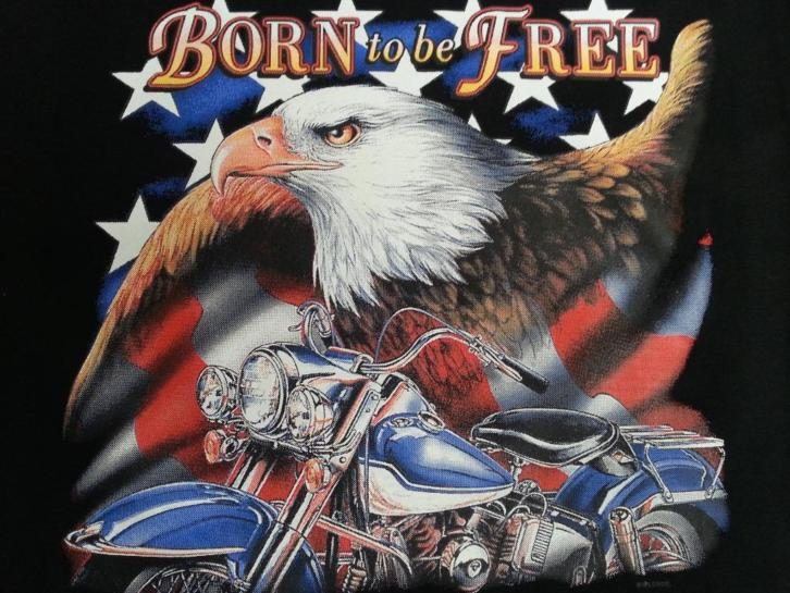 Born to be Free Motorcycle